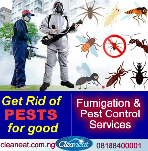 Cost of fumigation in Nigeria