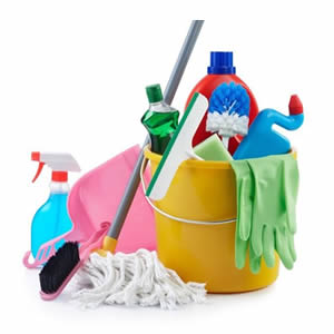 Disinfectants & Detergents