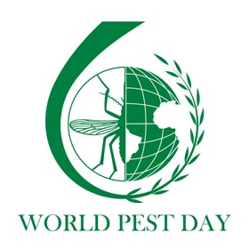 China world pest day
