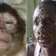 monkey-pox-in-nigeria