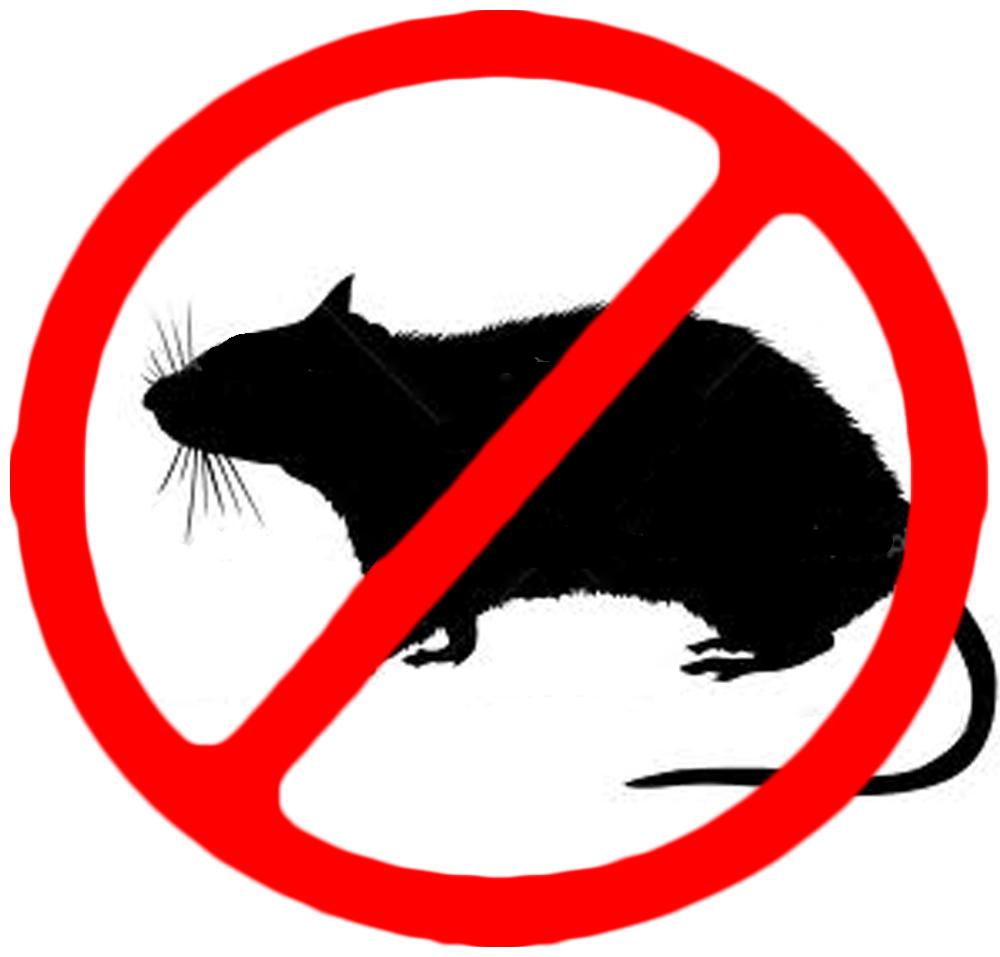 Rat Control Products