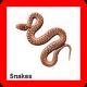snake prevention