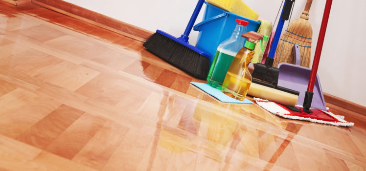 domestic cleaning service in Lekki
