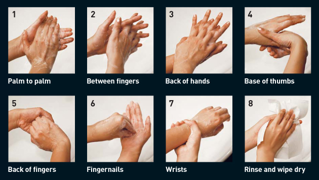 steps to getting a clean hand