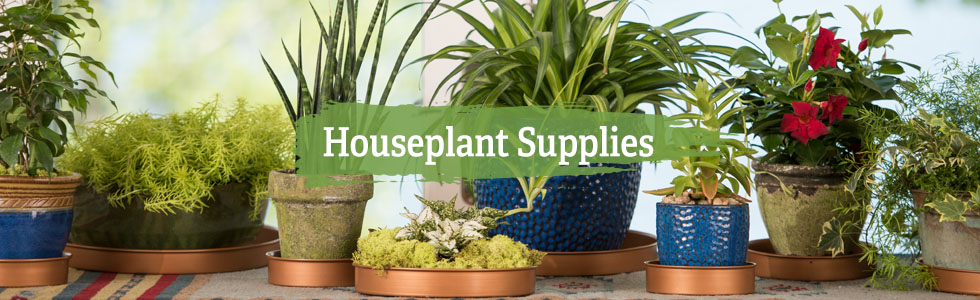 Gardening companies in Lagos and Port Harcourt