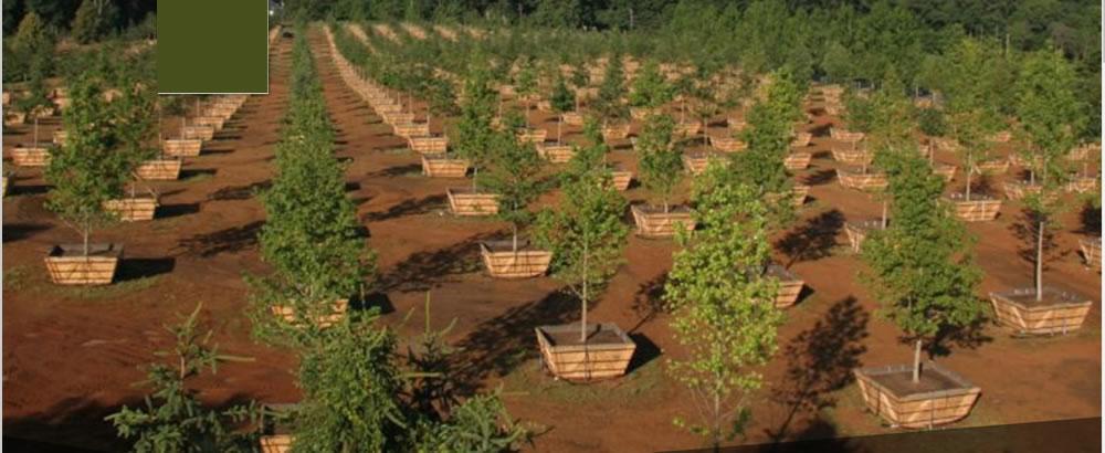 Gardening & Landscaping professionals