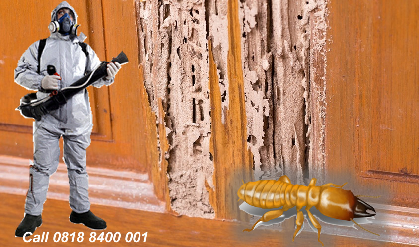 Termite-Fumigation-lagos