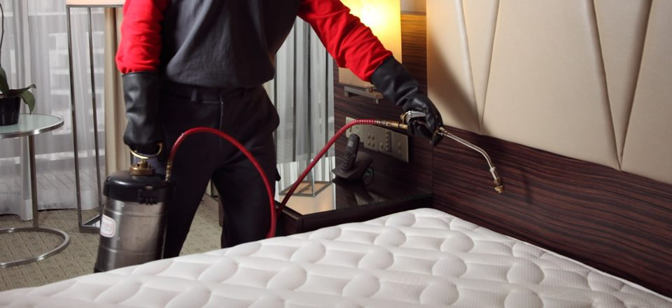 bed bug treatment specialist in Lagos Nigeria