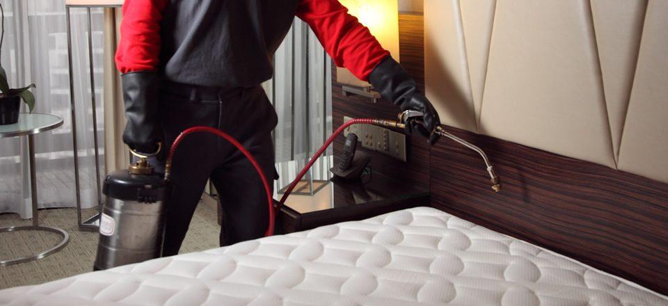 bed bug treatment specialist in Lagos Nigeria