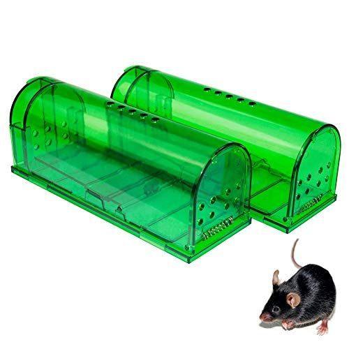 Humane-mouse-trap-in-lagos-nigeria