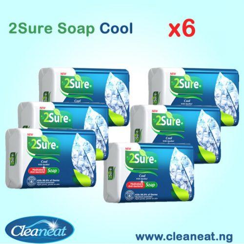 2SURE SOAP COOL X6