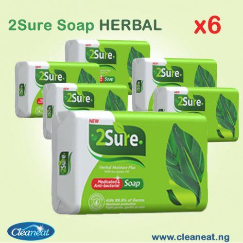 2SURE SOAP HERBAL X6